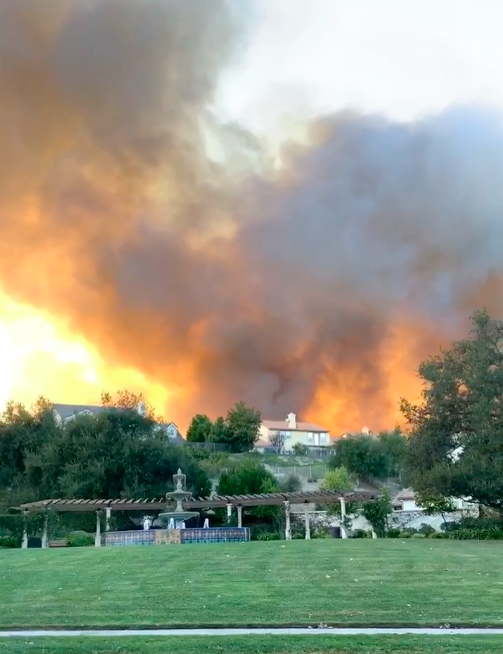 Unsung Rescue Group Saves Calabasas Community from Disaster