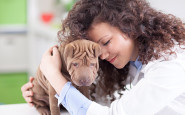 5 reasons why every nurse should consider adopting a dog