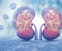 March Is National Kidney Month! 5 Simple Steps Towards Better Kidney Health