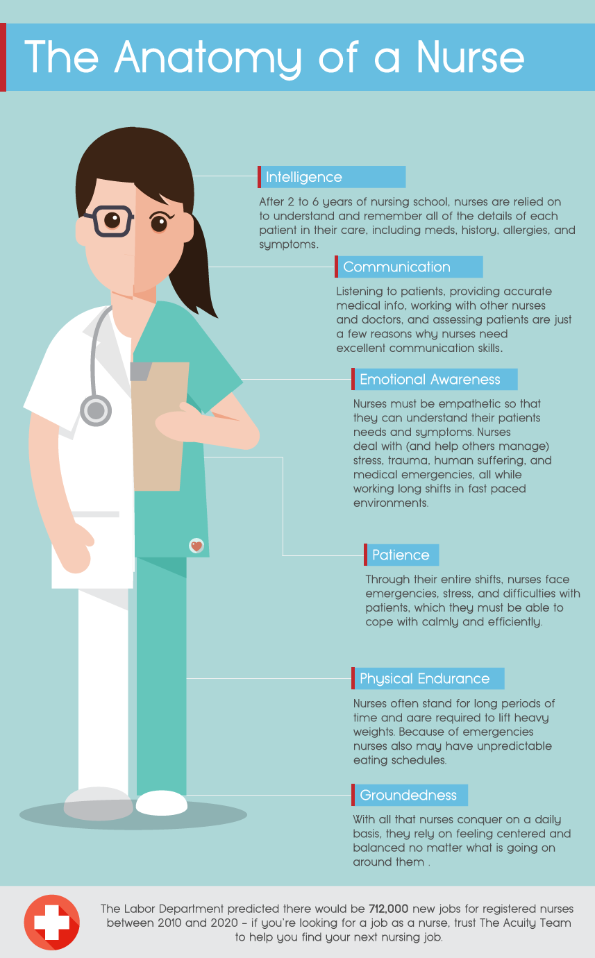 The Anatomy Of A Nurse (Infographic) | Scrubs - The Leading ...