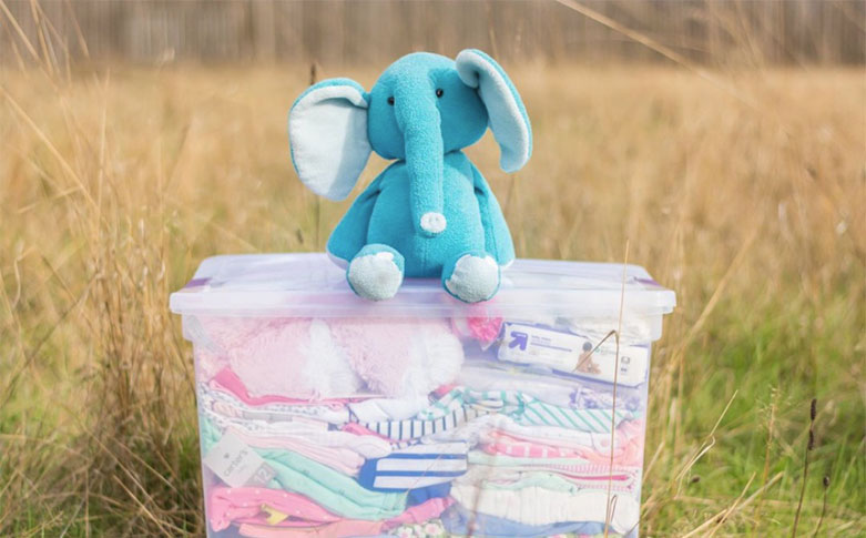 elephant on top of a box