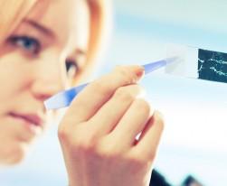 Shutterstock   science photo