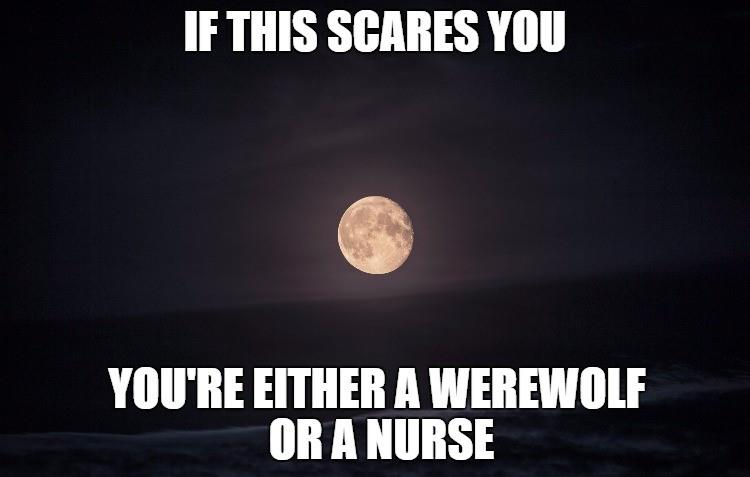 summer s best of funny nurses round 1 scrubs the leading