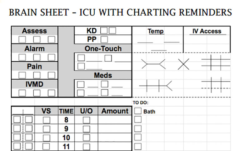 Nurse Brain Sheets Icu With Charting Reminders Scrubs