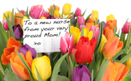 To my wonderful nurse daughter