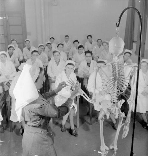 student-nursing
