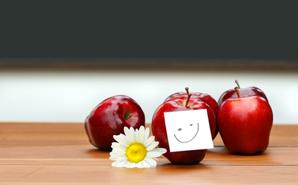 teacher-apples